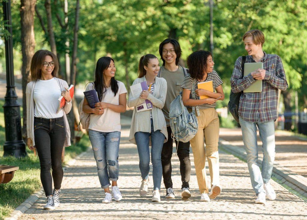 east sussex college euro practice